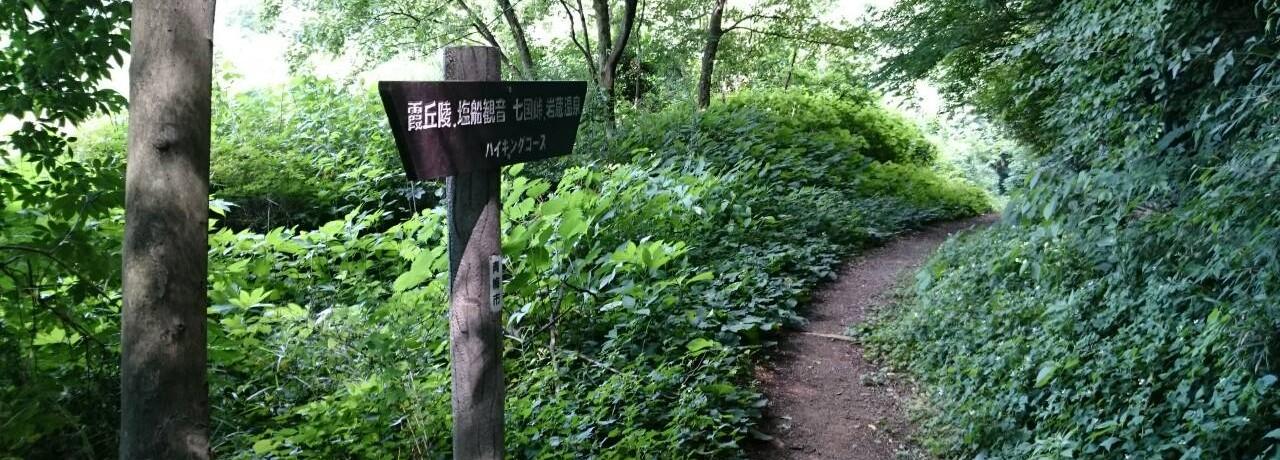 ハイキング コース紹介