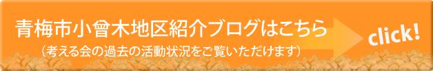 青梅市小曾木地区紹介ブログ